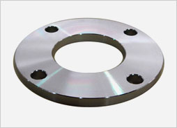 Stainless Steel Plate Flange Manufacturer/Exporter/Supplier